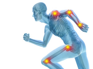 bones joints and sports injury