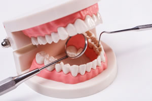 teeth and dental care